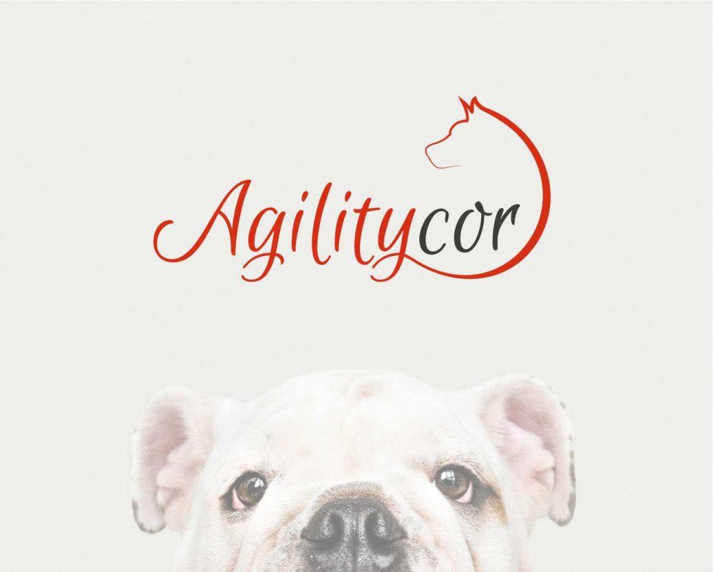 agiliticor branding